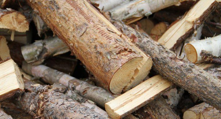 Врізав дуба в прямому сенсі: чоловік загинув, рубаючи дрова