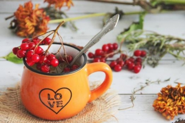 Корисні поради: Смачні гарячі напої для профілактики застуди