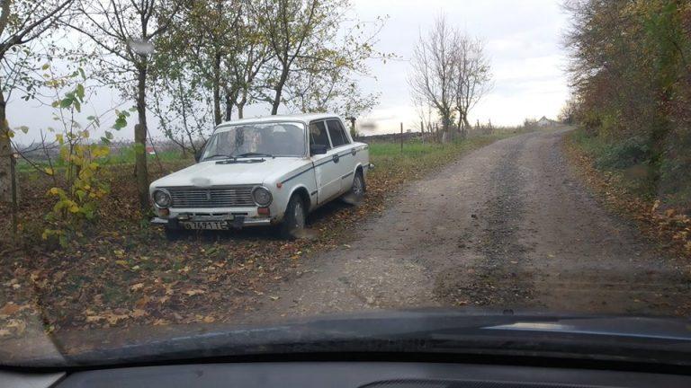 У лісосмузі поблизу автомобіля виявили тіло загиблого водія