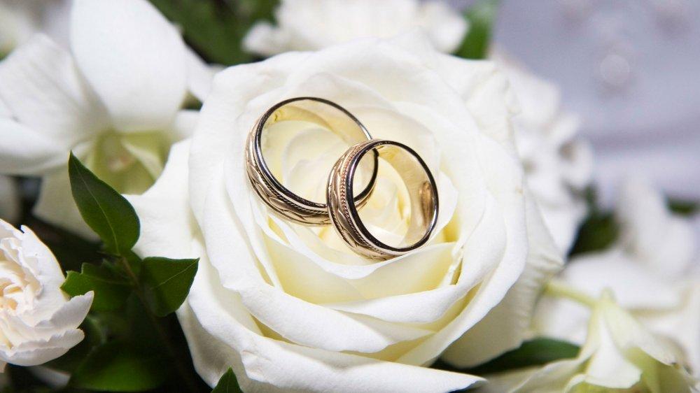 Молодята, які одружилися півстоліття тому, «засвітилися» в інтернеті (фотофакт)