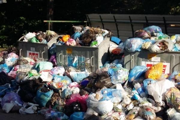В Бережанах тривають сміттєві баталії