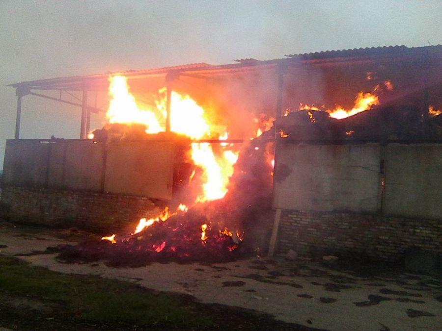 На Тернопільщині господарство постраждало від вогню