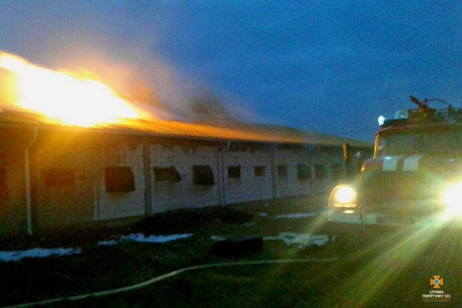 В Копичинцях загорілася птахоферма: вогонь гасили 3 години (фото)