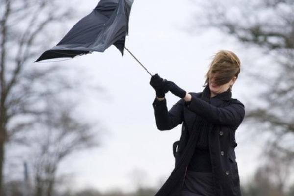 Заморозки та вітер: синоптик дала прогноз до кінця тижня