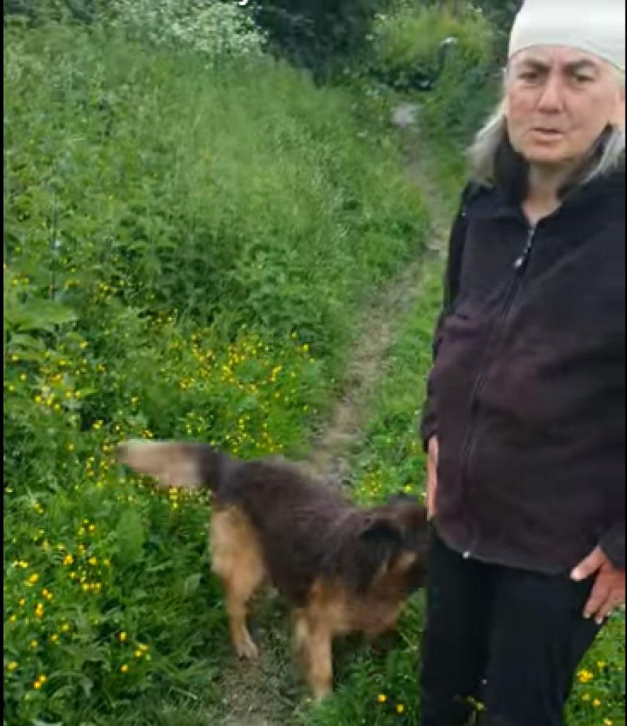 Жінка з Тернопільщини із 6-ма собаками просить про допомогу (відео)