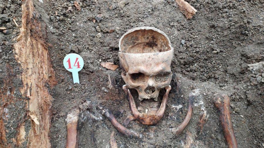 Стало відомо, чиї скелети розкопали будівельники у Чорткові