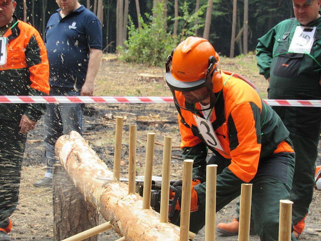 Визначено кращого лісоруба Тернопільщини
