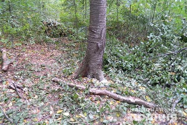 Прогулянка лісом ледь не стала останньою для чоловіка