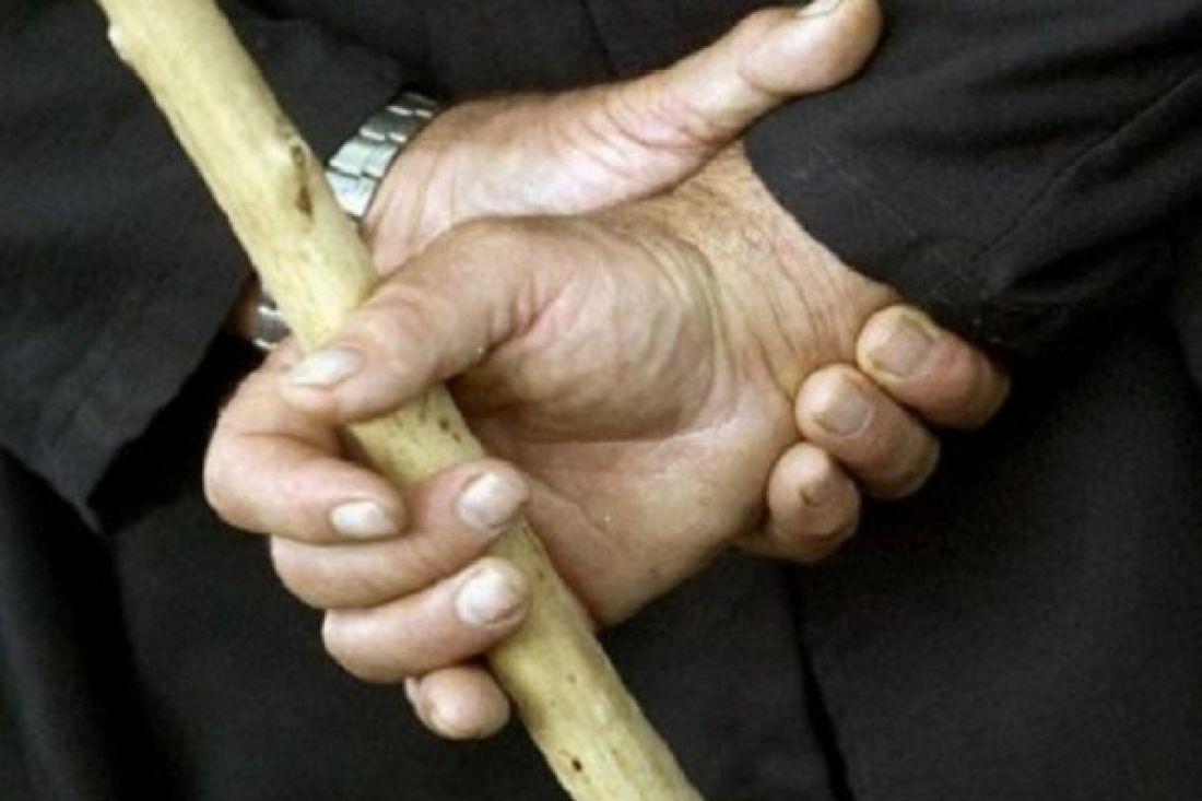 Історія про жорстоке вбивство цуценяти пенсіонеркою отримала несподівану кінцівку