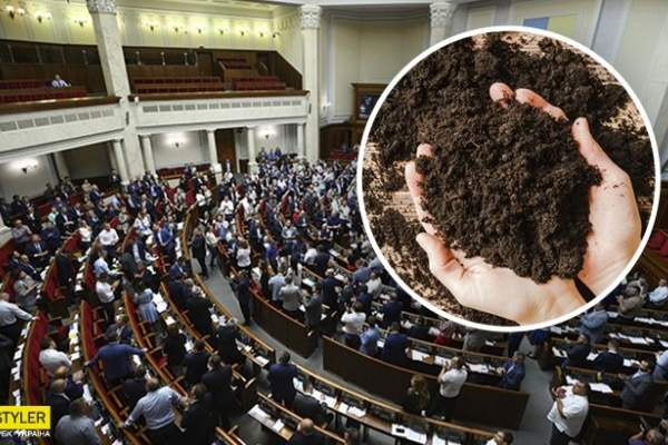 В Україні стартує продаж землі: названа вартість гектара