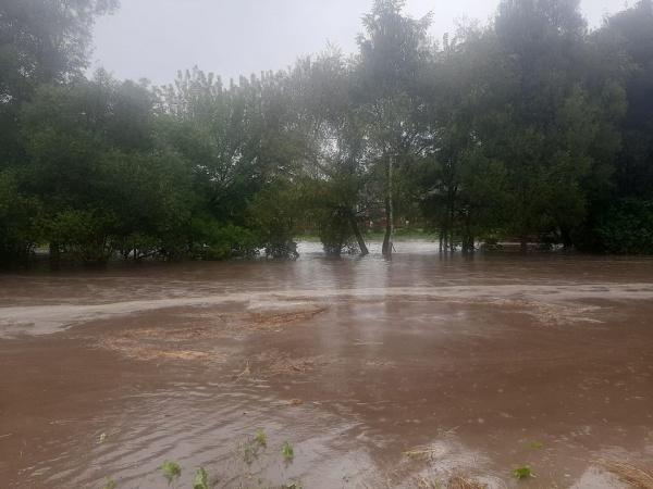 «Вся техніка у воді, корів ледве забрали»: на Тернопільщині через негоду затопило ціле село (Відео)