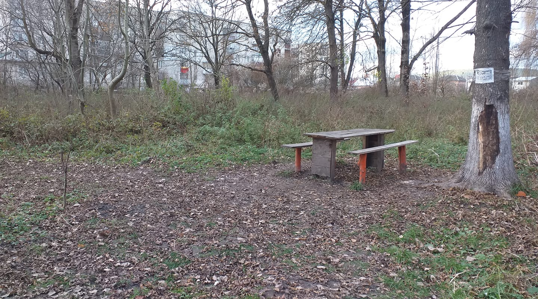 В Бережанах вирішили відновити парк